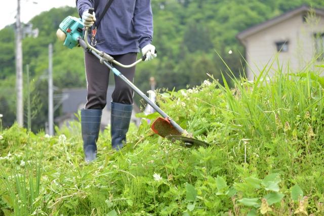 岐阜市で草刈りに最適な年3回の時期~楽に草刈りを終えるコツまで徹底解説
